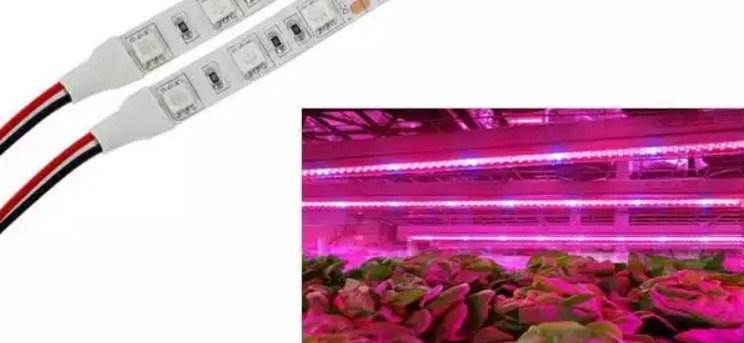 Светодиодные ленты для растений виды