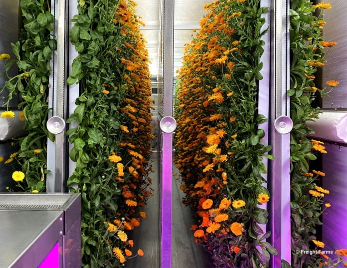 <pre>Грузовые фермы привлекают 15 млн. Долл. США в рамках финансирования серии B для расширения технического потенциала вертикального земледелия в контейнерах