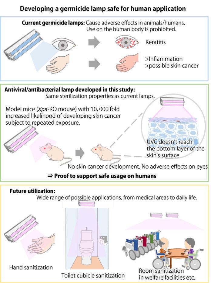 <pre>Университет Кобе и Ушио нашли 222 нм УФ-излучение безопасным для кожи человека