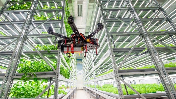 Запуск вертикальной фермы iFarm привлекает 4 миллиона долларов на автоматизированное домашнее хозяйство