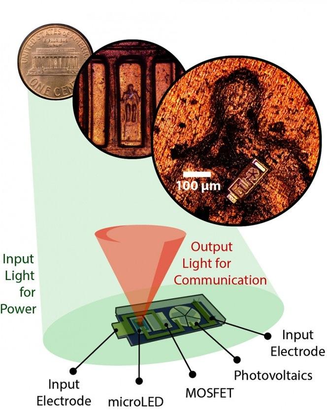 Исследователи из Корнелла разработали микроскопические датчики, в которых встроены микросветодиоды