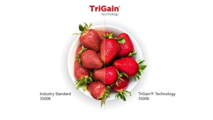 Nichia Corporation первой получила лицензию на технологию TriGain® от GE Current, компании Daintree