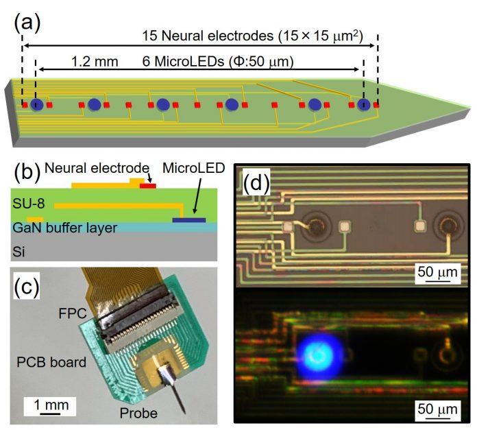Микро-светодиоды для медицинских приложений: GaN-on-Si epiwafers ALLOS используются для интерфейса мозг / машина in-vivo Университетом Тойохаси