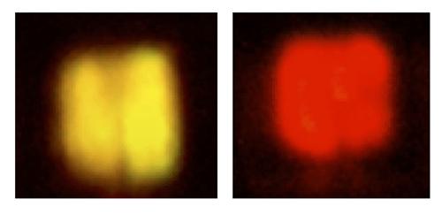 Миниатюрные красные светодиоды MicroLED